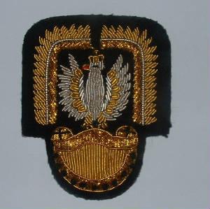 Polish Army & Czchoslovakalan Army ww2